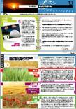 10 | 10 月 2014 | JAP | PDF